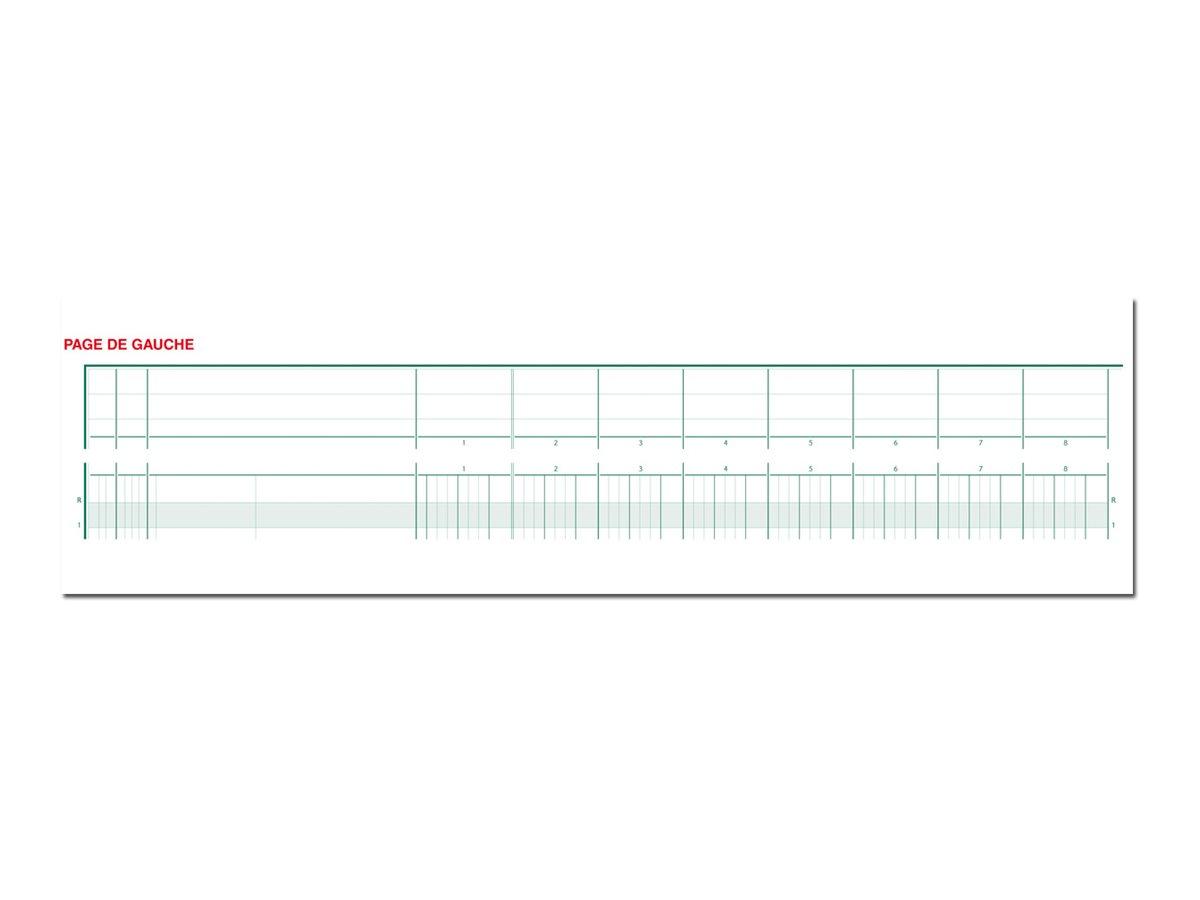 Exacompta - Piqûre comptable à tête paresseuse - 20 colonnes - 270 x 320 mm - paysage