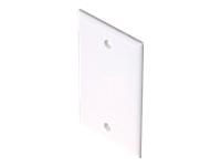 Steren Blank Cover Plate
