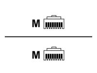 MCAD Cordons patch CAT6 et + 234180