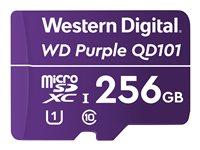 WD Purple SC QD101 WDD256G1P0C - Tarjeta de memoria flash - 256 GB