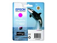 Epson Cartouches Jet d'encre d'origine C13T76034010