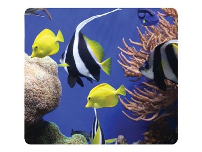 fellowes recycled mouse pad under sea