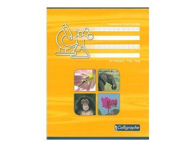 Calligraphe 7000 - Cahier de travaux pratiques - 17 x 22 cm- 64 pages - uni, Seyès