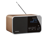 Grundig DTR 3000 DAB+ DAB-radio champagne