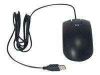 HP  USB Optical MouseDY651A
