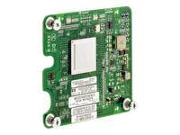 Hewlett Packard Enterprise  Module & option 451871-B21