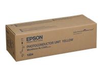 Epson Accessoires pour imprimantes C13S051224