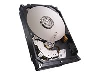 Seagate NAS HDD ST2000VN001