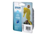 EPSON  T0485C13T04854020