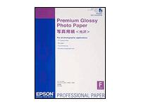 Epson Premium Glossy Photo Paper - papier photo brillant - 25 feuille(s)