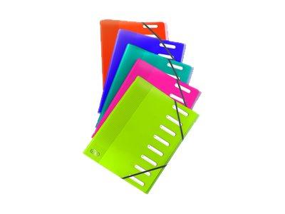 ELBA School Life - Parapheur - 12 pochettes - 12 positions - A4 - à onglets - disponible dans différentes couleurs
