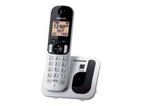 Panasonic KX-TGC210S