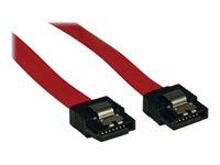 Tripp Lite 8in Serial ATA SATA Latching Signal Cable 7Pin / 7Pin M/M 8