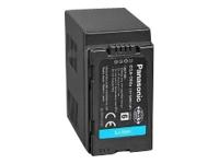 Panasonic CGA-D54SE/1H - batterie de caméscope - Li-Ion