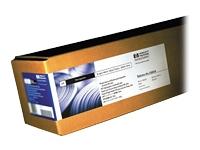 HP Papiers Sp�ciaux C6036A