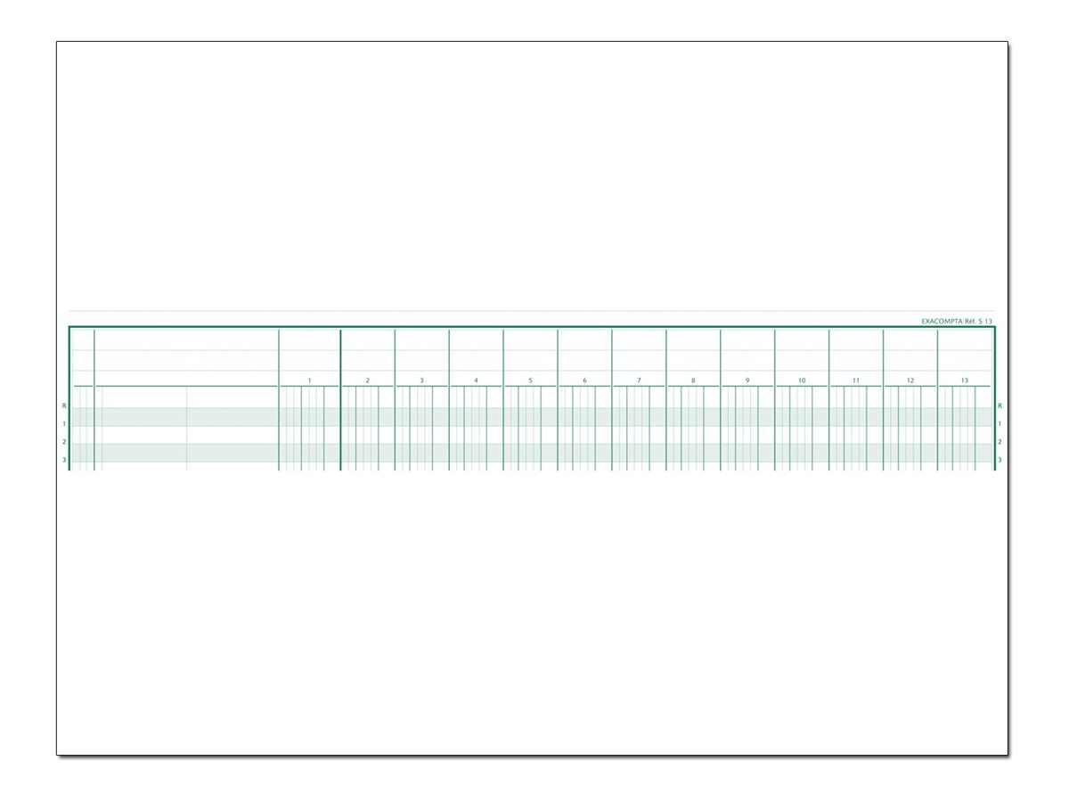 Exacompta - Registre - 80 pages - 13 colonnes - 250 x 320 mm - paysage