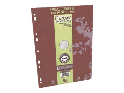 Calligraphe FOREVER - A4 - Copies simples - 21 x 29,7 - 100 pages - Grands carreaux