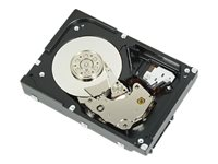 DELL HDD 2TB 7.2K RPM SATA 6GBPS CABLED HARD DRIVE