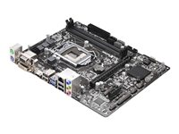 ASRock H81M-HDS - Motherboard - micro ATX