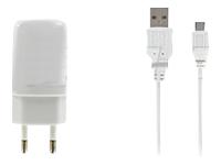 DLH Energy Chargeurs compatibles  DY-AU1870