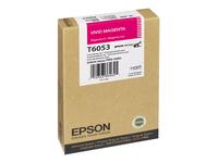 Epson Cartouches Jet d'encre d'origine C13T605300