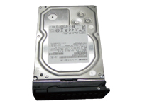 Netgear Options Netgear RDD1LT02-10000S