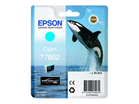 Epson Cartouches Jet d'encre d'origine C13T76024010