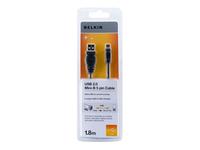 Belkin Câbles-USB F3U155CP1.8M
