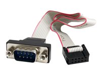 "StarTech.com ""16"""" 9 Pin Serial Male to 10 Pin Header Panel Mount Cable "" - Câble série - DB-9 (M) pour IDC 10 broches (F) - 40.7 cm - gris"