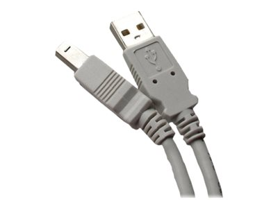 Professional Cable USB-10 USB cable USB Type B (M) to USB (M) USB 2.0 10 ft gray
