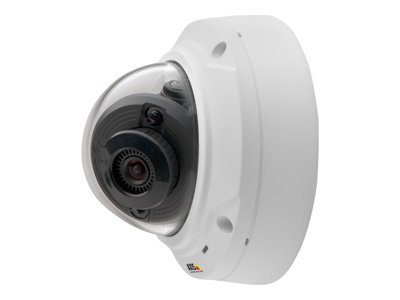 AXIS M3024-LVE Network Camera image