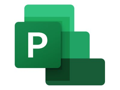 Microsoft Project Professional 2019 - Box-Pack - 1 PC - ohne Medien - Win - Englisch