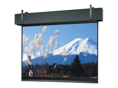 Da-Lite Professional Electrol Video Format Projection screen