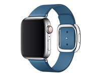 Apple 40mm Modern Buckle - Uhrarmband