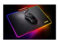 XPG INFAREX M10+INFAREX R10 Mouse ergonomic optical wired USB