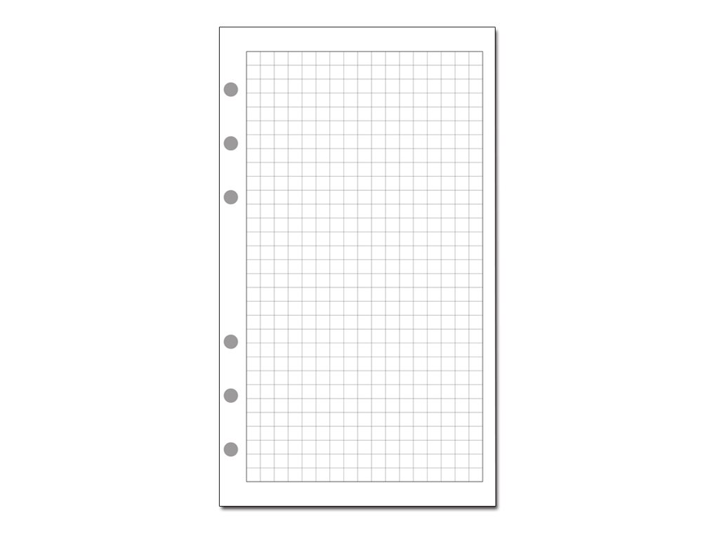 Exacompta Exatime 14 - recharge pour organiseur - 100 x 140 mm - 32 feuilles blanches - 5x5