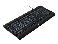 Aluratek Large Print Tri-Color Illuminated USB Keyboard Keyboard backlit USB