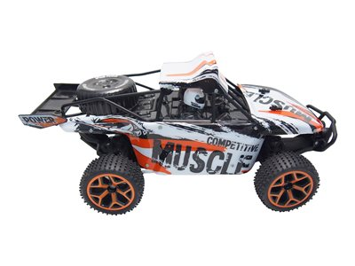 AMEWI - Sand Buggy Extreme D5 4WD RTR
