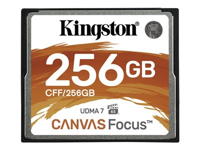 Canvas Focus - scheda di memoria flash - 256 GB - CompactFlash