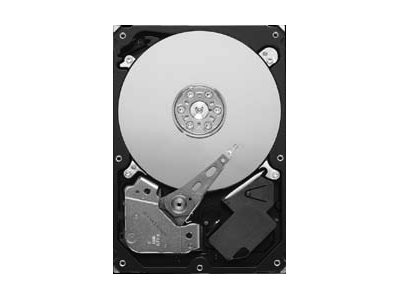 "Seagate Pipeline HD ST3250312CS - Festplatte - 250 GB - intern - 8.9 cm (3.5"") - SATA 3Gb/s"
