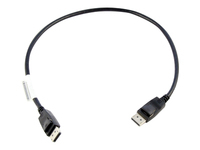 Lenovo - DisplayPort cable - DisplayPort (M) to DisplayPort (M) - 1.6 ft - for ThinkCentre M70; M720; M75; M80; M90; M90n-1 IoT; M920; ThinkStation P340; P520; V530S-07