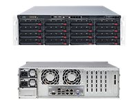 Supermicro SuperStorage Server 6038R-E1CR16N Server rack-mountable 3U 2-way RAM 0 MB
