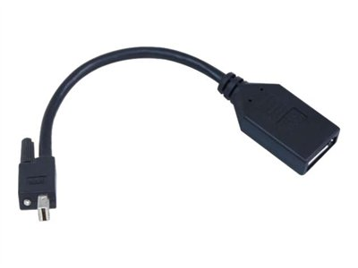 TripleHead2go upgrade DisplayPort-Adapter