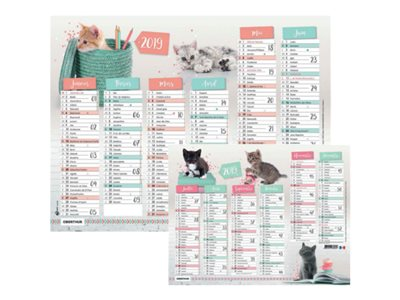 Calendriers civils Oberthur Chatons Stars - Calendrier - planning mural - 2017 - 6 mois par face - 270 x 210 mm