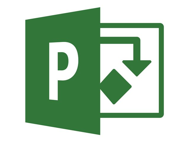 Image of Microsoft Project Professional 2019 - licence - 1 PC