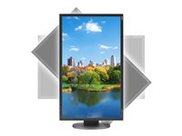 NEC MultiSync EA223WM-BK LED monitor 22INCH (22INCH viewable) 1680 x 1050 TN 250 cd/m²