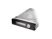 G-Technology Spare 8000 - Hard drive - 8 TB - hot-swap - SATA 6Gb/s - 7200 rpm