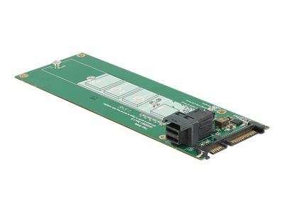 DeLOCK Converter SATA 22 pin / SFF-8643 NVMe > 1 x M.2 NGFF Key M Interfaceadapter