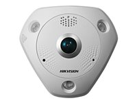 Hikvision 3 MP Ultra-Wide Panoramic Network Camera DS-2CD6W32FWD-IVS