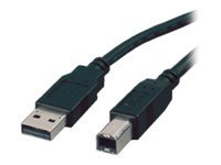 Roline - USB cable